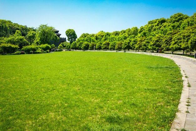 外で作業するのにおすすめな場所 公園